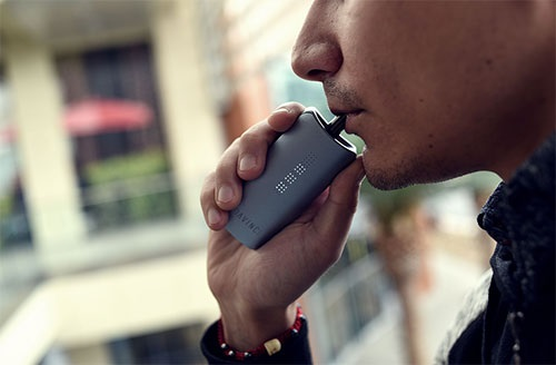 A Guide on the Best Dry Herb Vaporizer Powders that You Must Try Once